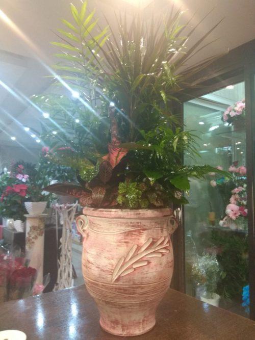 Επιβλητική σύνθεση φυτών με ροζ ανάγλυφο πήλινο-paterakis-apostoles louloudion-stolismoi gamon