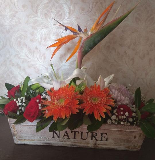 Λουλούδια-για-επαγγελματικά-δώρα-paterakis-apostoli-louloudion